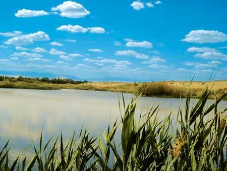 沙哈尔盖乡风景