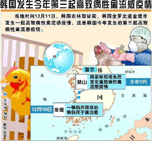 图表:韩国发生今年第三起高致病性禽流感疫情