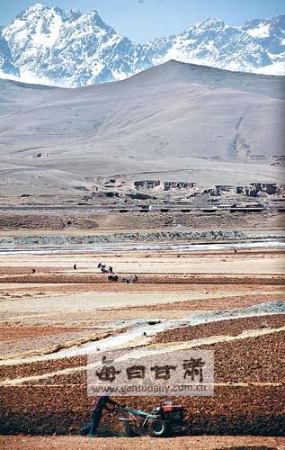天祝藏族自治县群众春播正忙