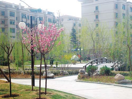 南面是天庆实验中学教学楼
