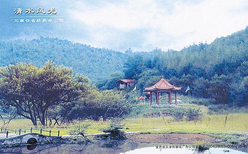 广西甘肃风景油画