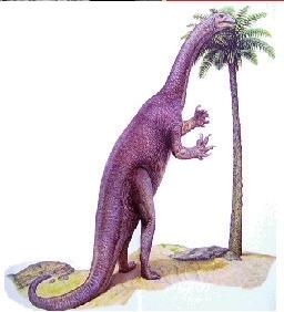 地球最古老的恐龙展 现代光影中的远古重现