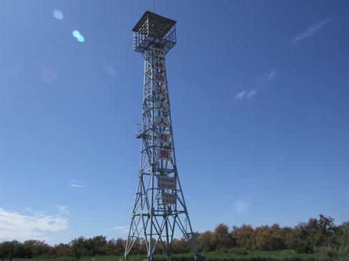 那高高矗立的护林员了望塔