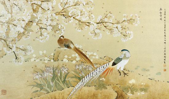 壁纸 动物 鸟 鸟类 雀
