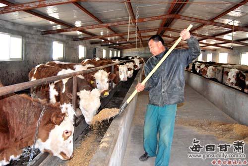 农村牛舍筒单结构图