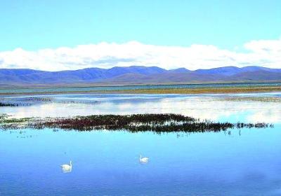 碌曲 则岔-尕海风景区(图)