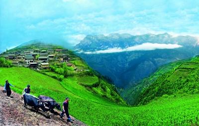 拉尕山风景区摄影作品选登--每日甘肃-专稿