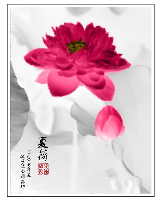 粉色水墨荷花纹身