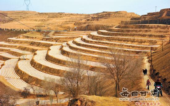 定西市安定区西巩驿镇在山地大面积铺设地膜(图)