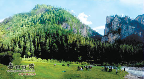 卓尼县境内大峪国家森林公园进入旅游旺季(图)
