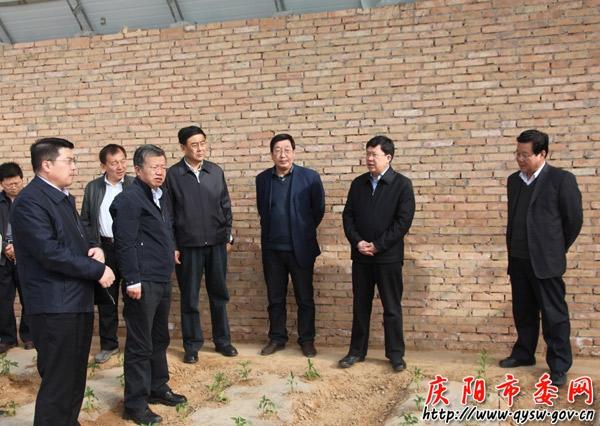 夏红民/夏红民对镇原县第一季度各项工作取得的成绩给予了充分肯定。