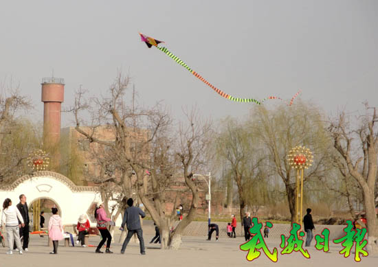 市民在凉州植物园放风筝(图)
