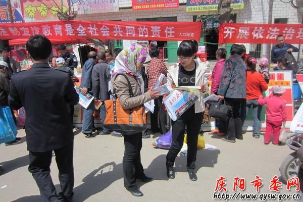 镇原县临泾乡开展大型法律宣传活动图片