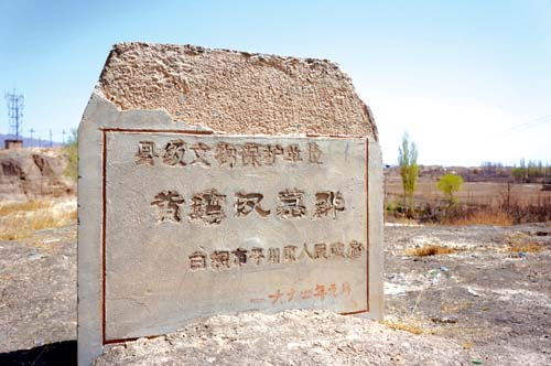 平川区水泉镇中村这个小山村的宁静,有人在村民赵庭海家老房子后面的