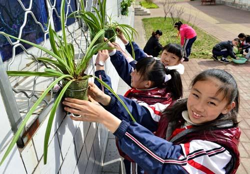 4月18日,秦皇岛市海港区光明路小学的学生们将刚栽植的绿色植物悬挂