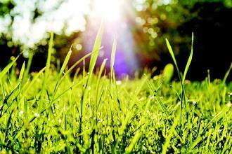 阳光总在风雨后原唱_
