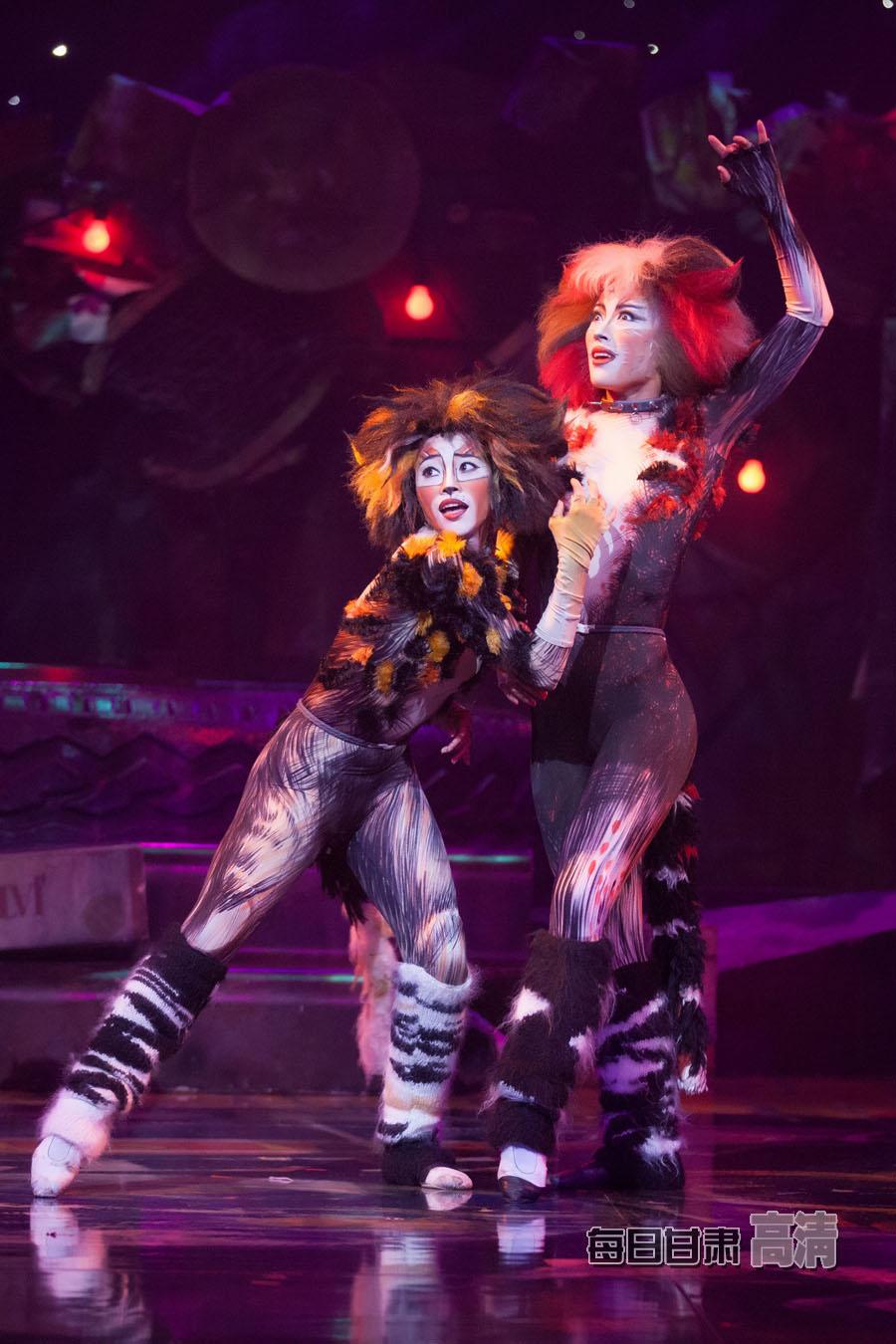 《猫》不仅是音乐剧历史上最成功的剧目也是音乐剧史上一...