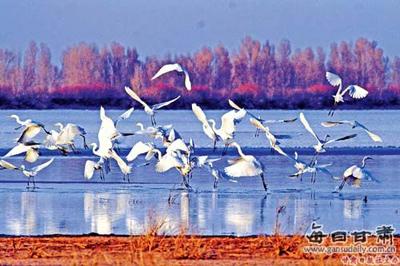 张掖黑河湿地国家级自然保护区