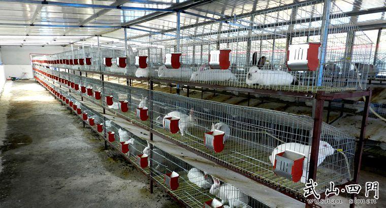 四门镇:促进产业结构调整