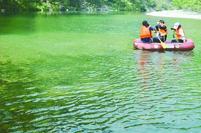 康县阳坝梅园风景区天鹅湖风光-康县 不要门票的生态旅游大景区