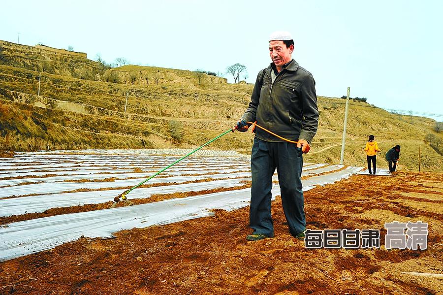 东乡县北岭乡前进村群众用喷雾器保墒下种.