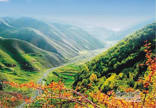 靖远哈思山森林风景旅游区