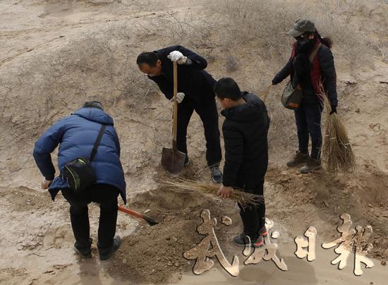 武威:誓让沙漠披绿装