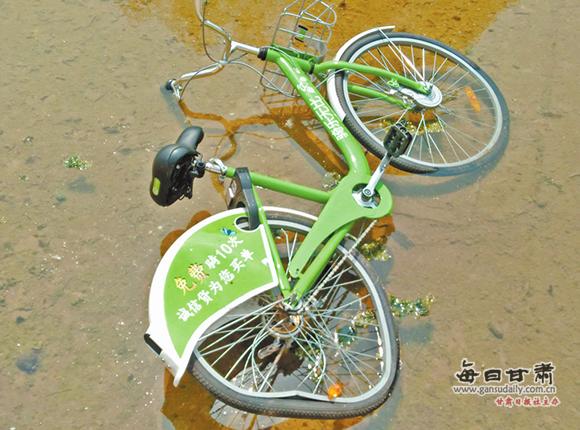 记者直击:无耻无德!兰州共享单车遭破坏扔进水