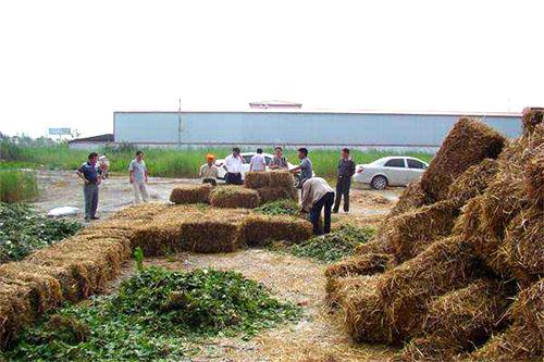 陇西:秸秆变堆肥 环保又增收
