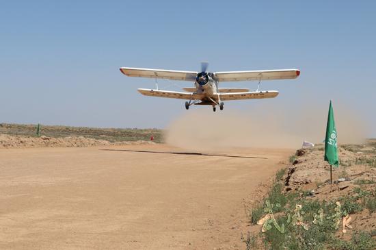 武威:飞播造林 绿化沙漠