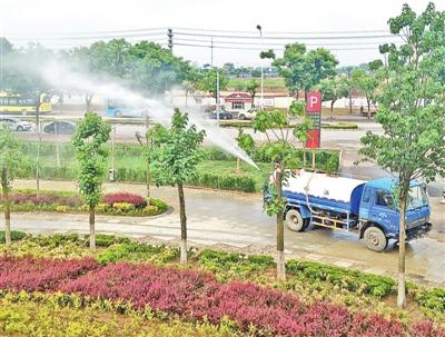 西峰区安排苗木植被抗旱保绿措施