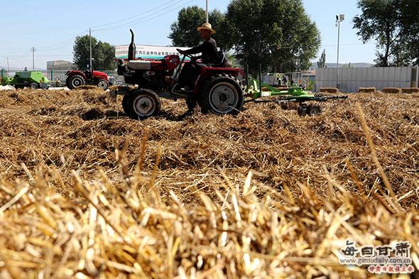 安定区完善畜牧产业体系助脱贫