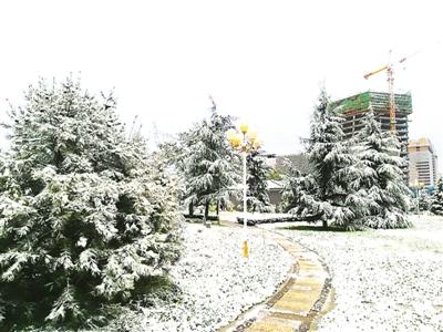 庆阳市迎来今年下半年首场降雪