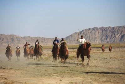 肃北县石包城乡举办首届骆驼文化节