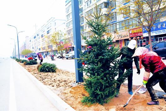 平川区开展植树造林活动