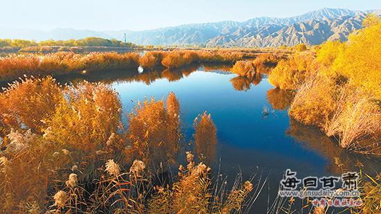 永靖县太极岛黄河湿地景色迷人