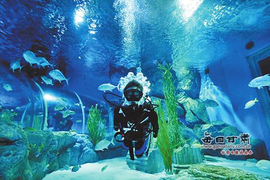 潜水爱好者在兰州极地海洋.