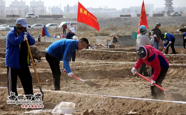张掖市2018年义务植树活动全面铺开