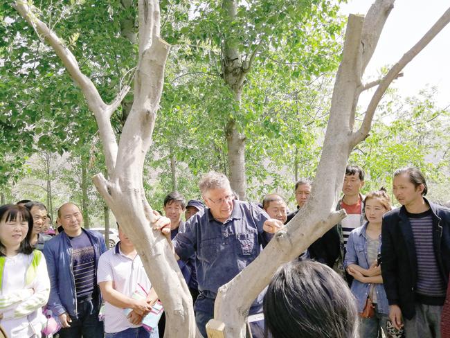 以色列专家与武都农户交流技术