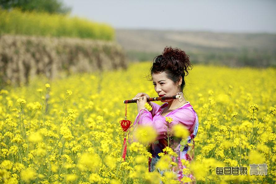 泾川油菜花开正逢春(高清组图)