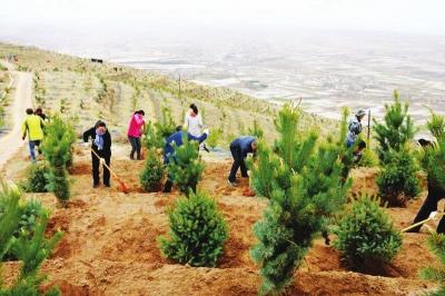 兰州:春风催新绿 植树正当时