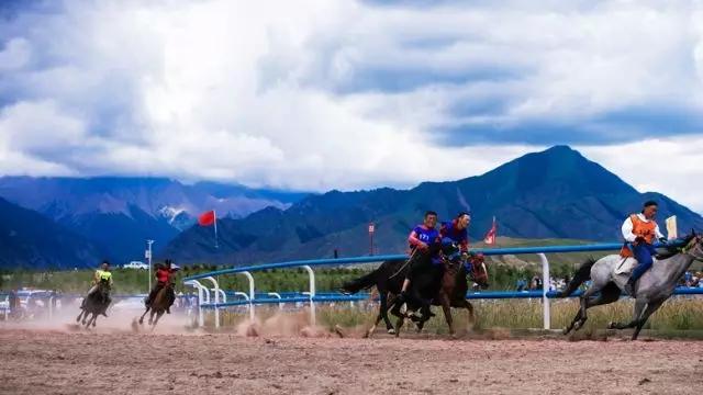 这个五一 去肃南看赛马