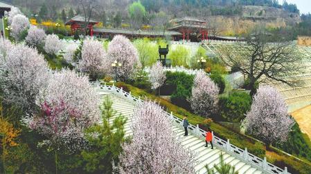 【导游带你逛景点】古灵台·荆山森林公园