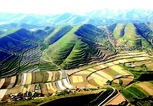 会宁县开辟5000亩造林梯田