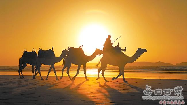 曹宗让讲述末代骆驼客的故事