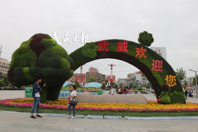 武威城市绿化品质不断提升