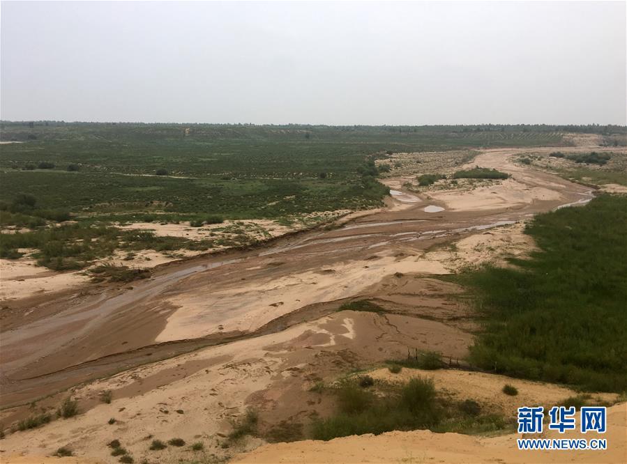 (新华全媒头条·在习近平新时代中国特色社会主义思想指引下——新时代新作为新篇章·图文互动)(5)绿富同兴画卷在沙海中铺展——库布其沙漠生态治理纪实