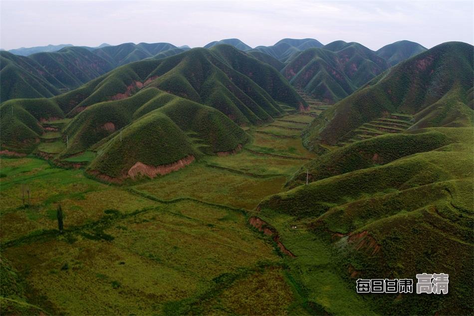 丽水双阳童山风景图片