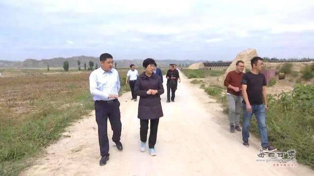 郑钰在北湾、糜滩两镇调研产业扶贫工作