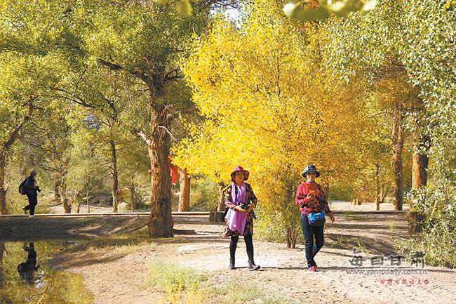 金塔县打造全域旅游新亮点